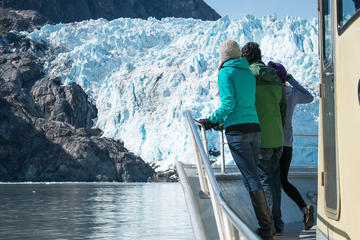 Full-Day Kenai Fjords National Park Adventure Cruise