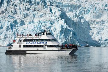 Glaciar Parque Nacional Kenai Fjords e cruzeiro vida selvagem