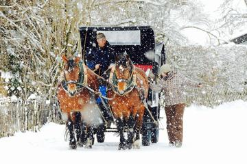 Winter Horse Carriage Tour