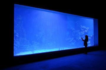 Hurghada Grand Aquarium Entrance ...
