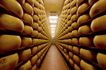 Bologna Food Experience: Factory Visits with Gourmet Lunch and Wine...