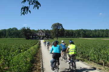 Burgundy Bike Tour with Wine Tasting...