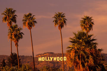 Tour delle case delle celebrità di Hollywood