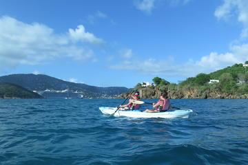 Turtle and Reef Snorkel Kayak Tour