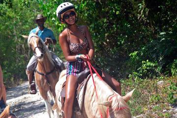 Beach Horseback Riding from Punta Cana
