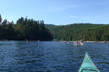 Brentwood Bay Kayak Tour and Wine Tasting