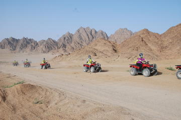 Quad-Safari in Scharm El-Scheich