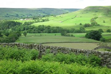 Private Yorkshire Dales Day Trip from York