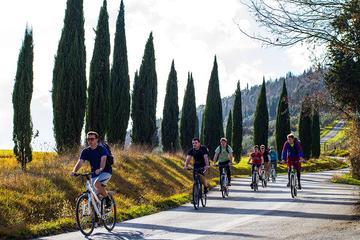 Excursão de Bicicleta de um Dia Inteiro à Zona Rural da Toscana