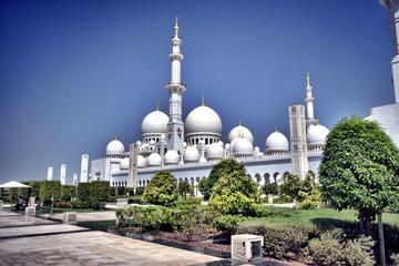 Tour di un giorno di Abu Dhabi con partenza da Dubai
