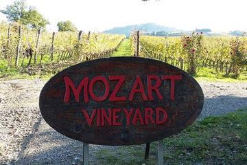 モーツァルト葡萄園モンタルチーノ近くのパラディソワイナリーでのワインテイステ…
