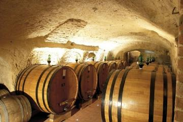 Wine Tasting Experience with lunch in Montepulciano