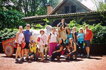 Les incontournables du CostaRica: circuit de 8jours