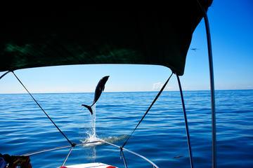 Sea Life Adventure Tour