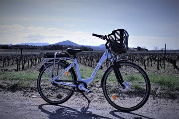 Electric Bike Rental from Vaison la Romaine