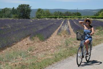 Luberon Electric Bike Rental from...