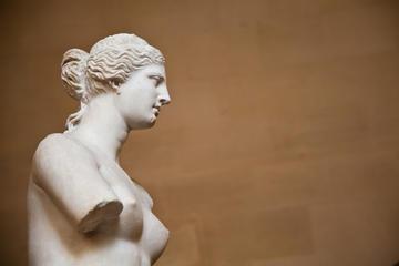 Zonder wachtrij: Louvre in Parijs