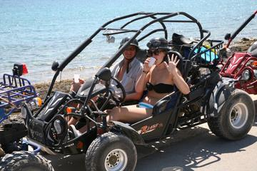 Tour dell'isola di Korcula in buggy e