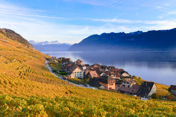 Riviera line To Montreux including Lavaux Unesco trolley tour with...