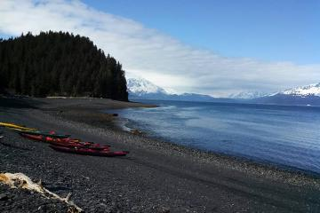Seward Kayak Tour on Resurrection Bay and Caine's Head Hike