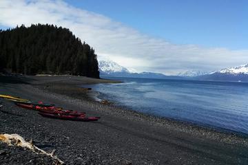 Tour en kayak en la bahía Resurrection de Seward y ruta de senderismo...