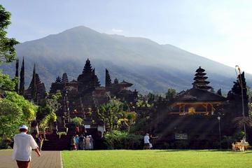 L'essenza di Bali: Tour di un giorno