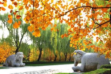 Viagem diurna privada em Pequim...