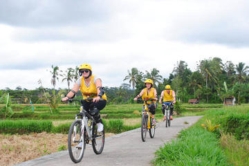 Private Tour: Ubud Cycling and Walking Adventure