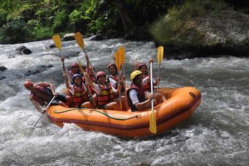 White Water Rafting Adventure in Ubud with optional Balinese Massage