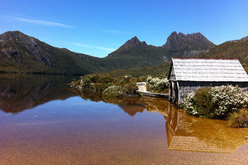 Cradle Mountain and Lake St Clair - Walking and Wildlife Tour with private camp