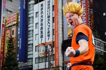 Otaku Experience: Akihabara In-Depth Tour