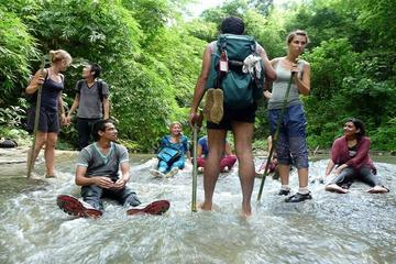 Private Tour: Full-Day Trekking Adventure Tour to Ham Ham Waterfall from Sylhet