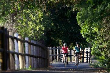 4-Hour Tour: Pune University Complex Cycling Private Tour