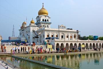 Private ganztägige Tour zu den größten Tempelanlagen Delhis