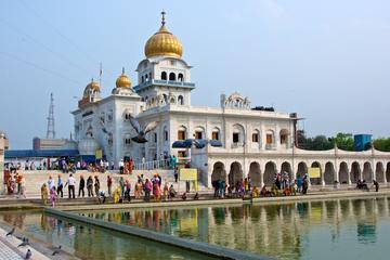 Visite privée d'une journée des grands temples de Delhi