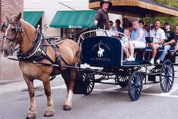 Historische Pferdekutschfahrt in Charleston