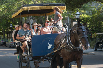 Book Private Historic Carriage Tour of Charleston on Viator
