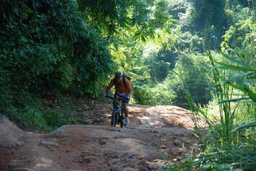Full-Day Dalat Bike Tour