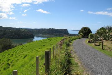 Ausflug zur Küste von Matakana ab Auckland