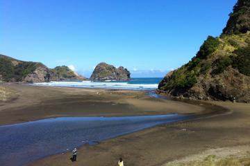 Piha and Karekare Rainforest Wine...