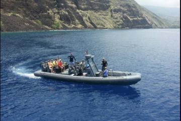 Snorkeling & Marine Life Experience