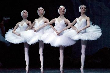 St. Petersburg: Swan Lake Ballet at...