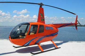 Tour privato di San Pietroburgo in elicottero