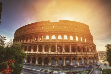 Colosseum Roman Forum and Palatine Hill Private Tour