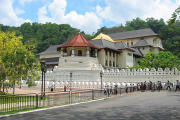 Discover Sri Lanka (4 Nights and, 5...