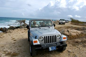 Aruba Half-Day 4x4 Jeep Safari Tour