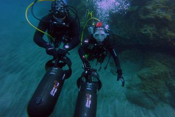 Due fantastiche immersioni con