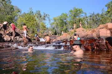 Litchfield und Jumping Crocodiles: Ganztagsausflug ab Darwin