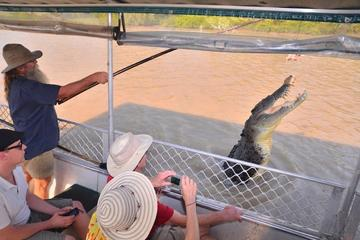 Springende Krokodile Tagesausflug ab Darwin