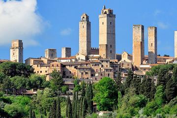 Tour vinícola y de los mejores paisajes de Chianti